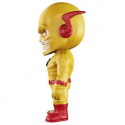XXRAY Reverse Flash 6